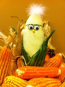 Frank N. Foode , mascot of the Biofortified Blog, poses with some orange maize that has been bred to express very high levels of beta-carotene. Follow Frank's adventures on twitter: @franknfoode Photo by Anastasia Bodnar.